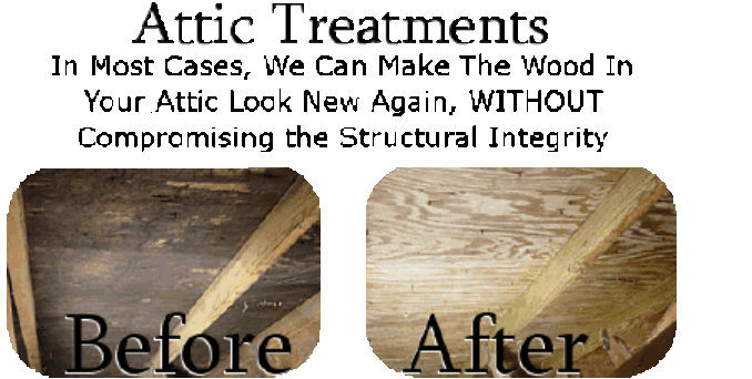 Attic Mold Removal and Abatement